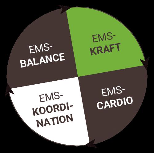 EMS Balance, EMS Kraft, EMS Koordination und EMS Cardio - alles im EMSRaum